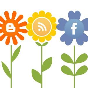 social-media-plants-3000x1500